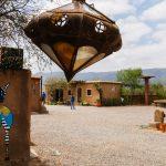 camping zebra